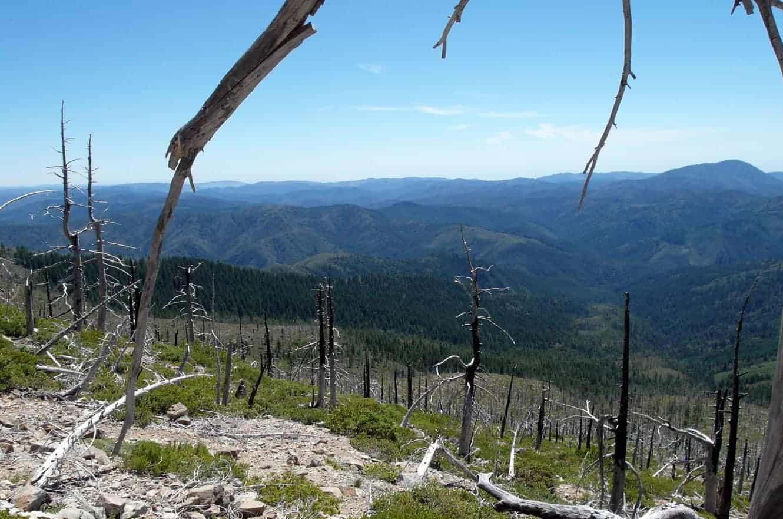 siskiyou-national-forest-oregon-04