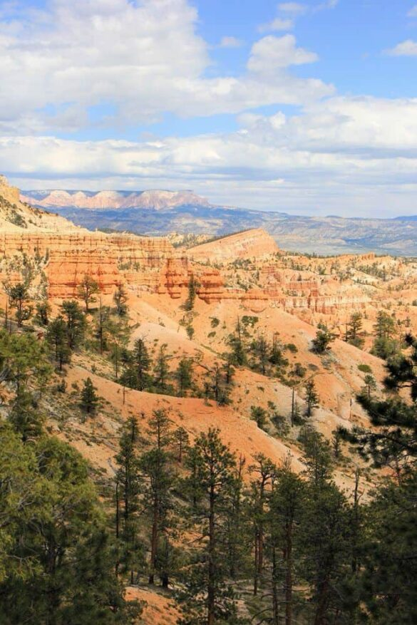 Tower Bridge Trail in Bryce Canyon National Park