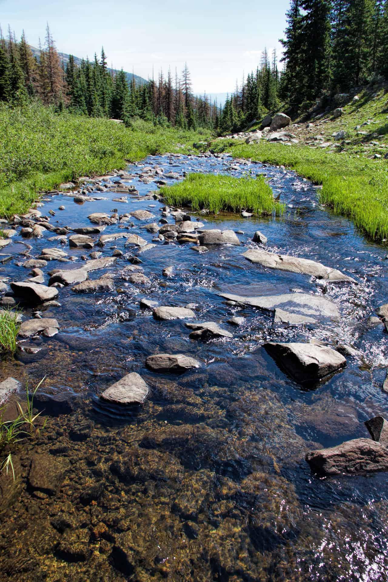 cochetopa-creek-trail-03