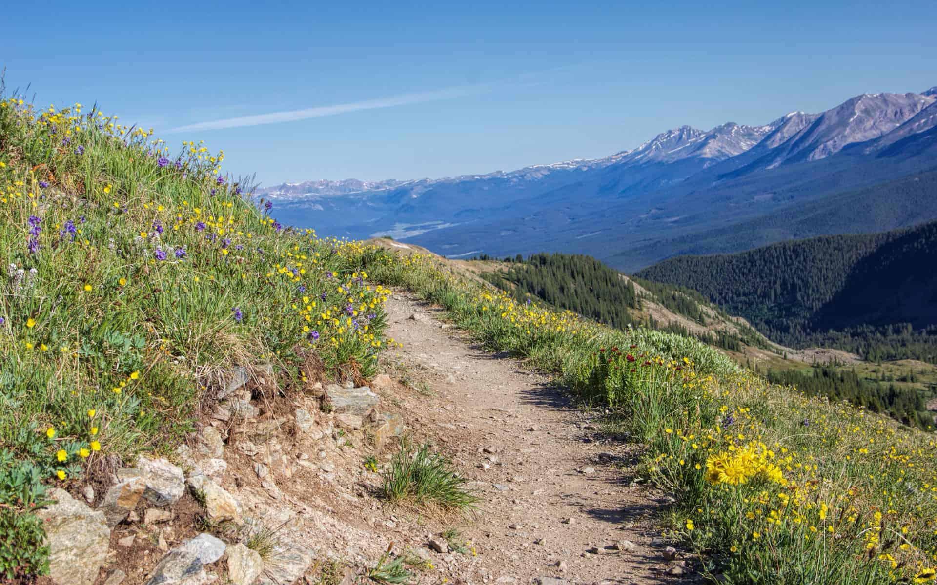 Colorado Adventure Rentals - ATV & Snowmobile Rentals  |Cottonwood Pass