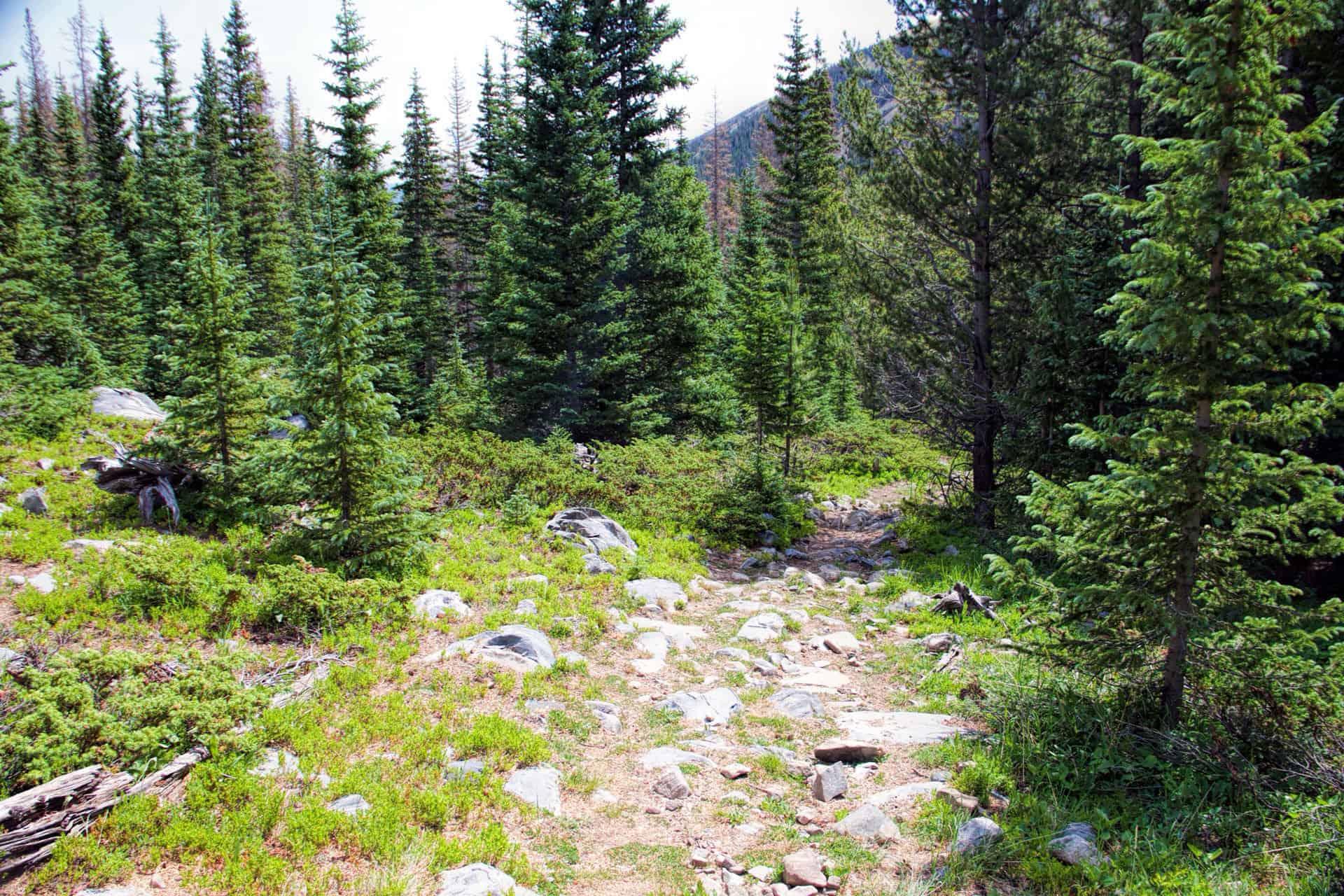 pass-creek-trail-01
