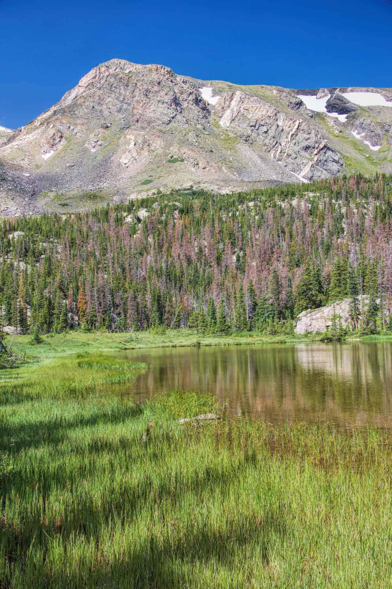 pass-creek-trail-02